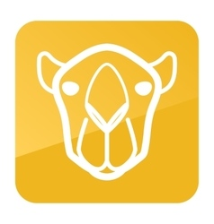 Camel icon animal head symbol vector
