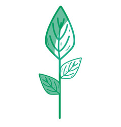 Silhouette ecology plants with leaves icon vector