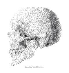 Skull 01 vector image