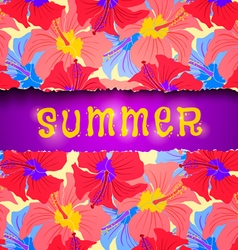 torn paper summer vector image