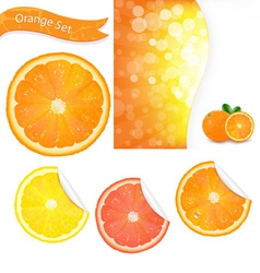 Orange labels vector