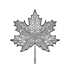 Decorative maple leaf vector