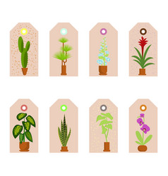 House plants stickers vector