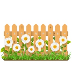 Wooden fence with camomiles vector
