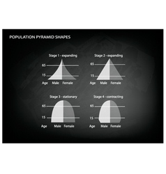 Four types of population pyramids vector