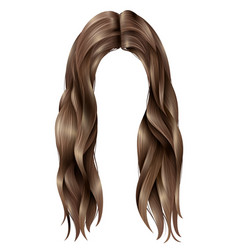 Trendy female long hairs vector