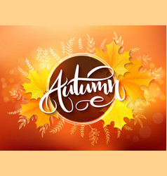 Banner with hand lettering label - autumn - vector