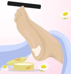 foot vector image vector image