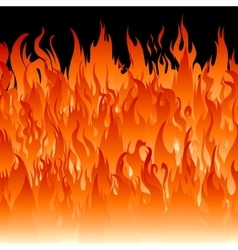 Fire flames wallpaper vector image