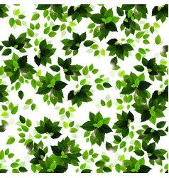 seamless background with green seasons leaves vector image