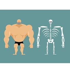 Human structure skeleton men construction of vector
