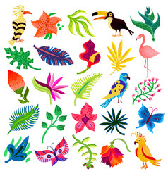 troipcal flora and fauna vector image