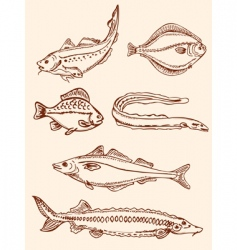 Set of vintage saltwater fish vector