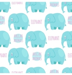 Elephan seamless pattern vector