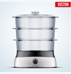 Electric food steamer vector