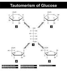Tautomerism of glucose vector image