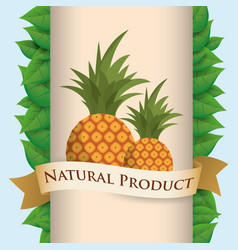 Pineapple natural product poster ribbon vector