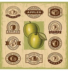 Vintage apple stamps set vector