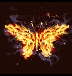 fiery butterfly vector image