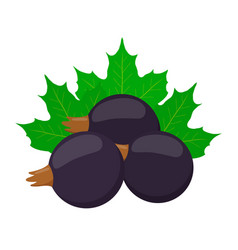 Fresh berries black currantflat vegetarian food vector