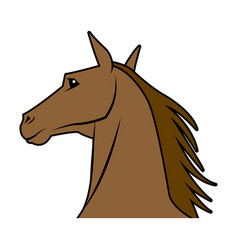 Head horse animal equine wild image vector