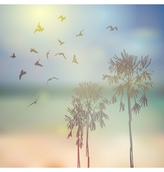 Silhouette of palm trees and birds beach sky and vector image vector image
