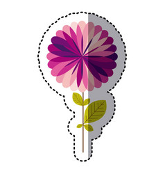 Some purple flower with some petals icon vector