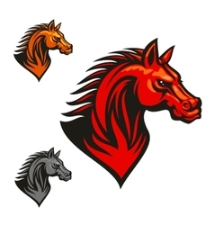 Horse stallion head and mane vector image