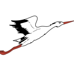 White stork in flight vector