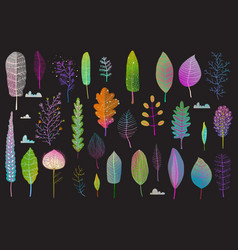 Colorful leaves design collection on black vector
