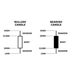 Japanese candlestick stock data model vector