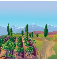 Plantation mountains vector image