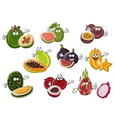 Ripe exotic asian fruits characters vector