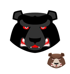 Angry bear head logo aggressive grizzly on white vector