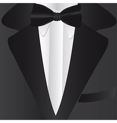 Formal suit and tie close up vector