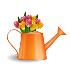 Watering can with bunch of tulips vector
