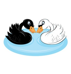Two swans vector