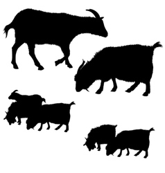 Collection of goat silhouettes vector image
