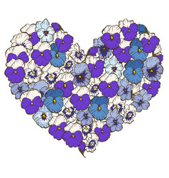 Heart of blue and violet flowers isolated vector