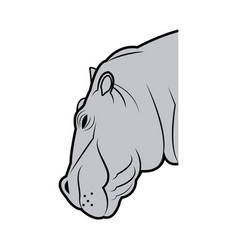 Hippo head animal naturalist wildlife style vector