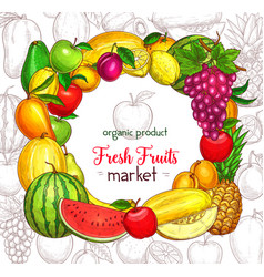Fruit frame border for organic food market poster vector