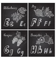 Hand drawn fruits alphabet vector