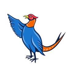 pheasantbird FIN vector image