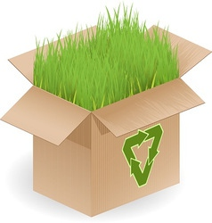 Recyclable open box vector