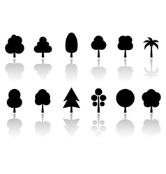 Isolated tree set with reflection vector