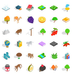 camel icons set isometric style vector image vector image