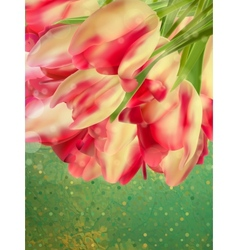 Vintage text frame with tulips old paper EPS 10 vector image