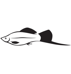 fish line vector image