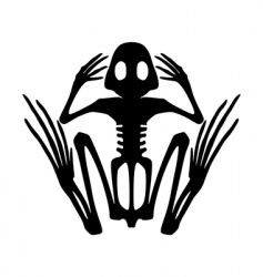 Frog skeleton vector
