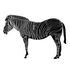 isolated zebra silhouette vector image